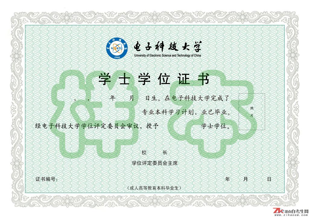 电子科技大学网络教育毕业证样本